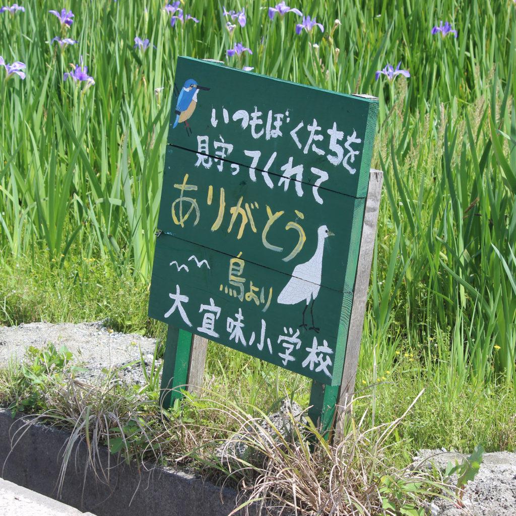 小学生による野鳥保護の看板「いつもぼくたちを見守ってくれてありがとう 鳥より」大宜味小学校